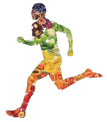 Why is nutrition important when exercising? Exercisecom